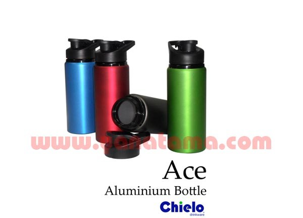 Stainless Bottle Ace   Rkec 01a 600x400
